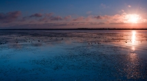 Emiquon sunrise