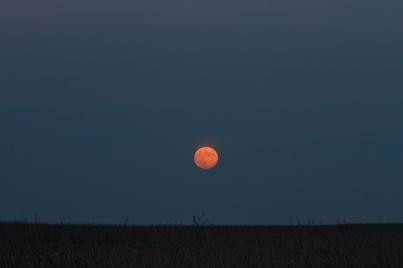 Hunter moonrise