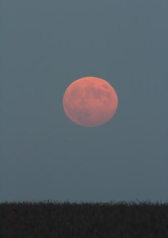Hunter moonrise 2