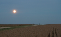 Full moon on the countryside