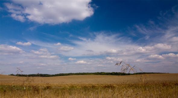 Mason County Skyline