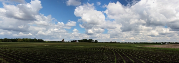 Farm_Panorama1-1